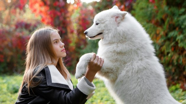 image of a girl with her dog in a park